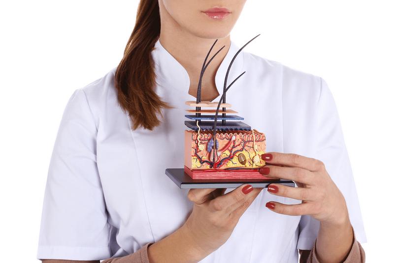 Как лечить облысение, подскажет опытный трихолог или дерматолог