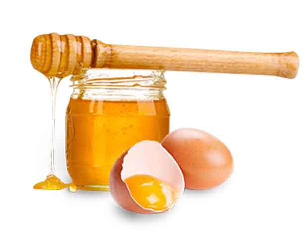 Мед и желток – доказанная эффективность лечения и восстановления