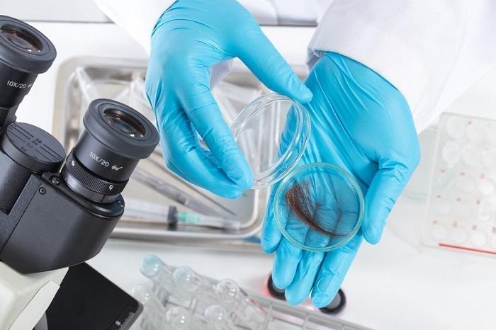 Дефицит микроэлементов определяется по анализу волос
