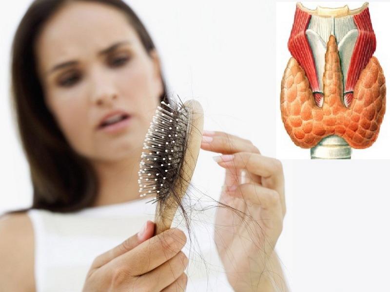 Проблемы эндокринологии негативно отражаются на шевелюре